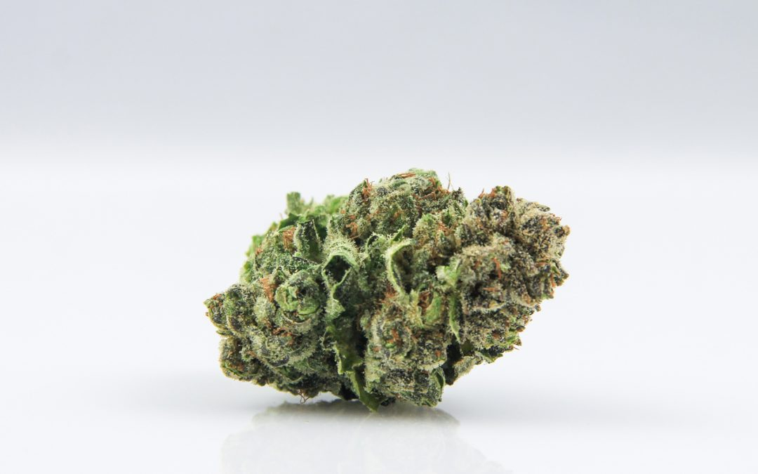 Connoisseur's Corner: Blueberry Headband & Purple Trainwreck