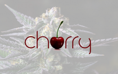Cherry – Premium Cannabis Flower