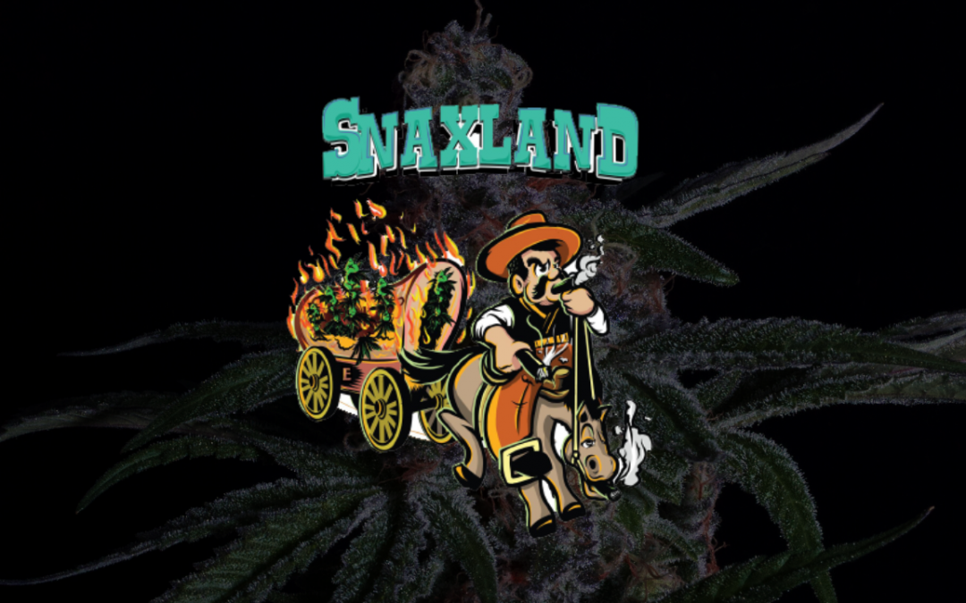 Snaxland Cannabis Flower Drops