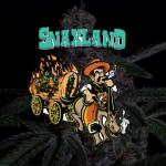 snaxland cannabis flower