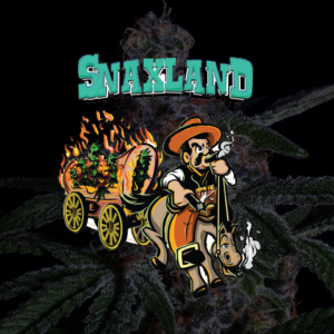 snaxland cannabis flower