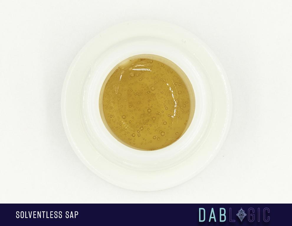 dablogic solventless sap