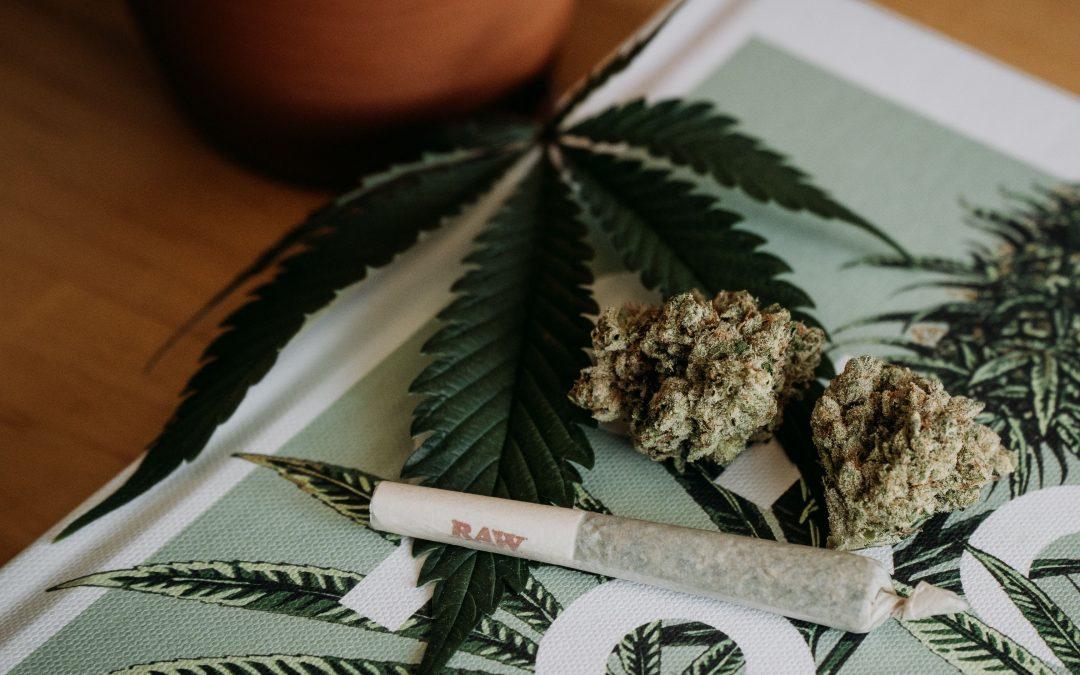 Best Cannabis Documentaries