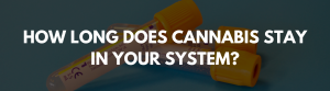 HOW LONG DOES CANNABIS STAY IN YOUR SYSTEM
