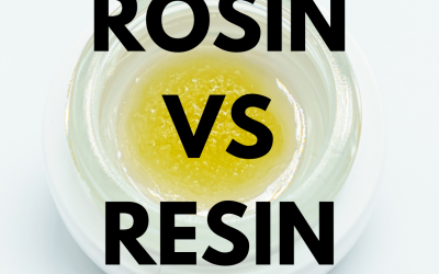 Cannabis Extracts | Rosin VS Resin