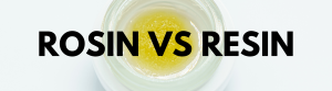 rosin vs resin cannabis extracts
